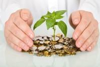 Nurturing Your Financial Future