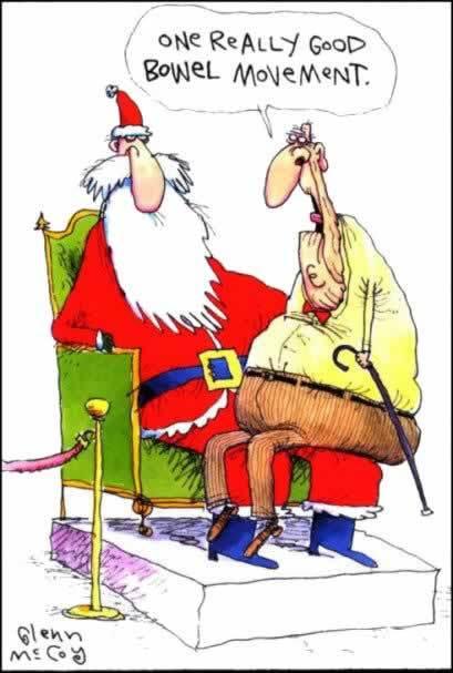 Christmas Smiles - One Really Good Bowel Movement